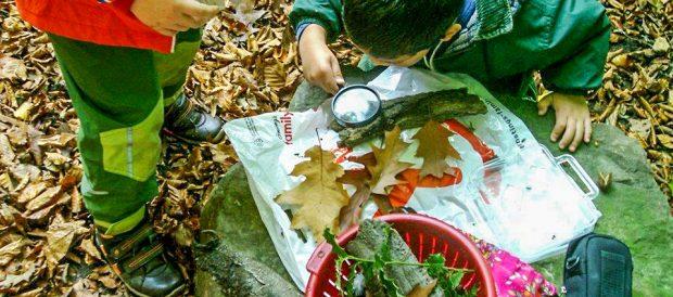 Erdforscher | Kindertagesstätte Zwappel Solingen Wald